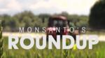 Monsanto RoundUp Lawsuit